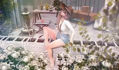 Under Construction (:-parfaitsprinkles-:) Tags: anhelo lode zenith soy air mutresse lagyo stealthic serendipity dustbunny milkmotion mudskin c88 collabor88 sunny avatar maitreya june secondlife virtualgirl virtuallife virtualreality catwa lona slife virtualfashion bear girl kurimu kuma