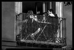 Sobremesa en el balcón (Montse Estaca) Tags: españa spagna spain comunidaddemadrid madrid hombre mujer man woman donna uomo coppia pareja couple balcony balcón streetphotography fotografíaurbana paisajeurbano sobremesa urbanlandscape urbanphotography bw bn bianco blanco black negro nero white fuji fujixt1
