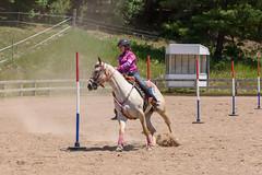 JBC_6183.jpg (Jim Babbage) Tags: krahc bethany appaloosa horses horseshow 2018