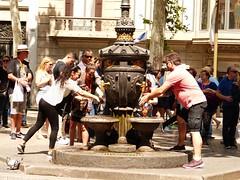 Barcelona Junio 18 (23) (calafellvalo) Tags: barcelona barcino parkgüell gardí gaudi catalonia spain jardines garden calafellvalo antonigaudí eusebigüell muhba hipòstila