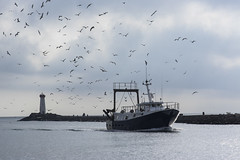 1K3P5739 (flotographe13) Tags: boat marine fishing ship lighthouse sea water eau gabians pentax k3 samyang 85mm samyanglenses f14 as if umc