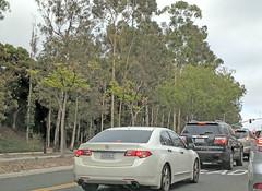 Acura TSX 5-29-18 (Photo Nut 2011) Tags: car sandiego california acura tsx gmc