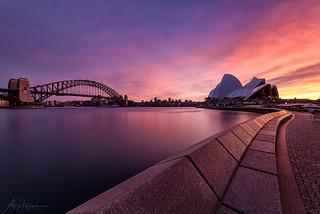 Opera House Bench Sunrise