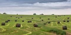 Baling Hay (dshoning) Tags: bales iowa hay country june sky green