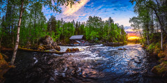 Myllykoski sunrise (M.T.L Photography) Tags: juuma kuusamo myllykoskisunrise sun sky trees forest rocks mtlphotography mikkoleinonencom summer riverkitkajoki water grass green bright night summernightsunrise