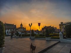 DSCN1094 (gustavoamaranto) Tags: ngc nationalgeografic bangkok tailandia thailand travel travelphotography lanscape paisajes atardecer atardeceres nikon nikoncoolpix nikoncoolpixb700 travelnikon