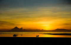 silent sunset take my hand... (Genylend) Tags: sunset clouds mountmayon volcano dog fothorapher sea pacific ocean philippines cantanduanes island