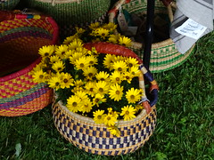 DSC07951 (guyfogwill) Tags: 2017 baskets coombetrenchard devon flora flower guyfogwill june lewtrenchard okehampton theenglishcountrygardenfestival wicker unitedkingdom gbr