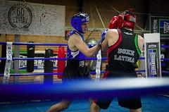 28363 - Uppercut (Diego Rosato) Tags: uppercut montante pugno punch boxe pugilato boxing ring match incontro rawtherapee tamron nikon 2470mm d700