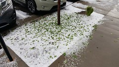 May 18, 2018 - Hail in Thornton. (David Canfield)