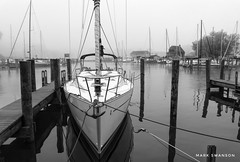 At the Dock (mswan777) Tags: 1855mm nikkor d5100 nikon ansel blackwhite white black monochrome sail scenic nature outdoor michigan stjoseph city mist fog boat water bay marina dock rope sailboat