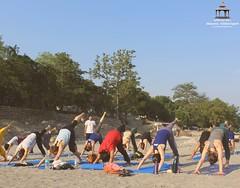 200-hour, 300-hour & 500-hour residential Hatha Yoga Teacher Training Courses with Beginners Yoga programs and Yoga Retreats in Rishikesh, India. (Rishikesh Yogpeeth - Abhayaranya) Tags: rishikeshyogpeeth yoga peace ytt teachertraining yogateachertrainingindia yogateachertraining yogaschoolsrishikesh rishikeshyoga yogaretreatsrishikesh yogacenter yogaalliancecertificationinindia fun love selfie groupshot retreat retreats rys200 rys500 portrait forest rys300 grass people park tree landscape
