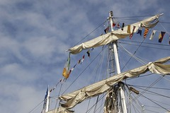 Tall Ships (Paul McNamara) Tags: sirjohnrogersonsquay dublin ireland tallship sails flags