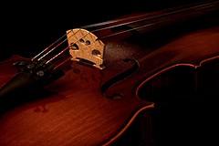 After the Concert (picsessionphotoarts) Tags: stillifephotography apsc lichtundschatten lightsandshadow sigma sigma60mm sigmaart60mm28 sonyphotography sonyalpha stilllifephotography stillleben sony sonyalpha6500 ilce6500 violine geige violin musik music detailverliebt details