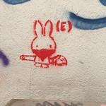Rabbit robber? thumbnail