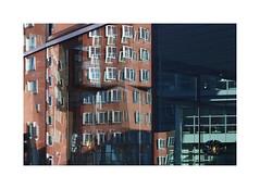 Düsseldorf - Neuer Zollhof (Michael.Kemper) Tags: canon eos 6d 6 d canoneos6d canonef2470f4lisusm ef 2470 f4l f4 l is usm deutschland germany nrw nordrheinwestfalen northrhinewestphalia westphalia rhein rheinland niederrhein düsseldorf duesseldorf dusseldorf neuer new zollhof neuerzollhof frank gehry beucker gehrybauten bauten gebäude building reflection spiegelung rhine unterbild frankgehry medienhafen hafen port harbour media medien red rot