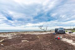 Built Ford Tough (yarnim) Tags: atlantic ford f150 raptor fordraptor builtfordtough rx1 35mm landscape car truck vehicle sky florida keywest carlzeiss zeiss sony fishing