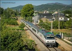 A Proba. (pazalberto269) Tags: arco trainspotting tracks grande lineas renfe diurno nikon natural galicia spain verde photography paisajes