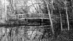 The Enchanted Bridge (joeldinda) Tags: grandledge eatoncounty park tree michigan pocketcam parks fitzgeraldpark footbridge december 2012 fuji fujifilm pool bridge 1956 creek bw monochrome blackandwhite finepix fujifilmfinepixf10 f10 finepixf10