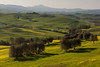 Rolling Hills (Andrew G Robertson) Tags: tuscany italy landscape rolling hills toscana pienza val dorcia