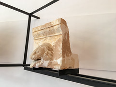 IMG_0475.jpg (Darren and Brad) Tags: drainspout sicilia tempiodizeusolympios italian templeofzeus drainage archeology valledeitempli museoarcheologicoregionalepietrogriffo sicily italy italia valleyofthetemples agrigento ancientgreek lion it