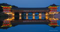 Woljeonggyo Bridge (Efrain_Rodriguez) Tags: landscape landschaft paisaje water agua blue azul night noche river rio light luz bridge puente asia korea reflection