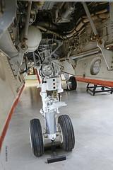 Grumman F-14A-100-GR Tomcat n° 303  ~ 160684 / 211 / NL (Aero.passion DBC-1) Tags: pima air museum tucson az dbc1 david biscove aeropassion avion aircraft aviation musée muséedelair collection usa grumman f14 tomcat ~ 160684