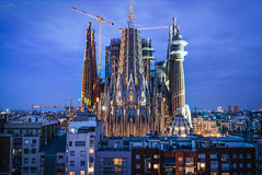 La Familia es Sagrada (_Hadock_) Tags: sagrada familia church architecture barcelona night noche gaudi catalonia spain españa cataluña reflect reflection mirror espejo agua water lake building contraction construction light iluminada lighted nikon d750 tamron 2470 creative commons fullhd fondo de pantalla wallpaper walpaper screensaver nature city cityscape sky tree