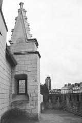Château des Ducs de Bretagne - Nantes (samuelparois) Tags: canon a1 ilford delta delta100 rodinal black white noir blanc film 35mm analog argentique