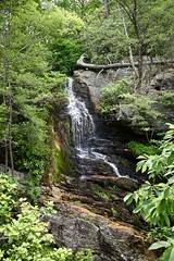 Tory's Den Falls (phthaloblu) Tags: north carolina hanging rock state park waterfall forest trees rocks torys den