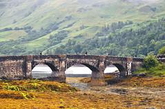 Highlands - Attraversando (Celeste Messina) Tags: ponte bridge castello castle eilean donan eileandonancastle scotland scozia scottish scozzese archi pietra stone stones stonebridge arches loch cross paesaggio landscape