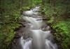 Flow Rider (SeeBake) Tags: stream ndfilter woods washingtonstate travelwashington neutraldensityfilter hiking pnw pacificnorthwest