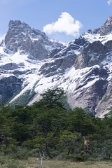 DSC03485 (wongjen) Tags: south america patagonia mountains hills green landscape argentina chile