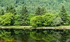 Loch Tay, Scotland (pdorta) Tags: tay loch lake lago escocia scotland