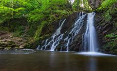 Fairy Glen Falls (jasty78) Tags: water waterfall cascading cascadingwaterfall fairyglenfalls fairyglen longexposure flow rosemarkie inverness scotland nikond7200 tokina1116mm blackisle