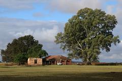 Paisaje de campo - Countryside landscape (Ce Rey) Tags: campo countryside argentina trees árboles cielo buenosaires provinciadebuenosaires 7dwf