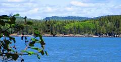 Irving Nature Park, Saint John - New Brunswick (jeffglobalwanderer) Tags: irvingnaturepark naturereserve saintjohn newbrunswick canada coastalpark nature coast oceran atlanticocean sea oceanfront coastline