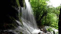 Cascade du Val (Pierrefontaine les Varans) (WoPeR 25 ☘️) Tags: france francia frankreich franchecomté forêt doubs cascade cascades cascadesduval pierrefontaine les varans gigot