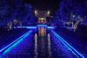 Blue perspective (Pendore) Tags: swimmingpool piscine bleu blue color night nuit lapalmeraie marrackech morroco maroc vacances holidays