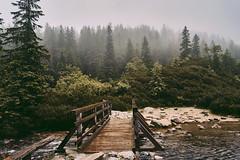 E37D9921-3969-4928-B270-F69FFCA15B32 (jullietserov) Tags: mountain mountains poland zakopane lake nature forest water fog waterfall rain clouds trees bridge