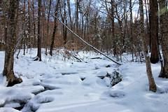 20180203-IMG_2942-Edit (franciscoruela) Tags: hiking winter landscape mt garvey