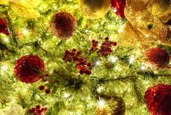 New Year! / Новый Год! (dmilokt) Tags: елка игрушка свет light dmilokt