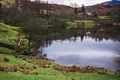 Reflection (StevePilbrow) Tags: loughrigg tarn national trust lake district park cumbria lakes north west england country side water walking trees hill pike nikon d7200 nikkor 18105mm march april 2018