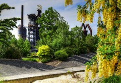 Le jardin des Traces (BelSoq) Tags: industrie fleurs lorraine uckange usine