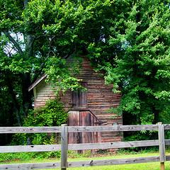Barn Beside The Road (redhorse5.0) Tags: smallbarn dawsoncountygeorgia fence trees rustyhinges weatheredwood farm redhorse50 sonya850