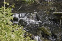 Au Fil de l'Eau (Atomic Blue Bee) Tags: nature eau fil verdure rocher mousse ru