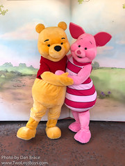 Meeting Winnie the Pooh and Piglet (Disney Dan) Tags: 2018 spring waltdisneyworld disney magickingdom fantasyland themanyadventuresofwinniethepooh disneyparks disneycharacters winniethepooh piglet april avril character characters disneycharacter disneyphoto disneypics disneypictures disneyworld fl florida mk manyadventuresofwinniethepooh orlando pooh themanyadventuresofwinniethepoohmovie travel usa vacation wdw winniethepoohfriends winniethepoohmovie winniethepoohsgrandadventure
