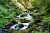 Schwarzwald (D)-57 (Andre's fotocarrousel) Tags: 2017 duitsland europa schwarzwald allemagne germany deutschland blackforest forêtnoire