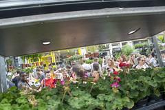 DSC_2670 (photographer695) Tags: london columbia road sunday flower market