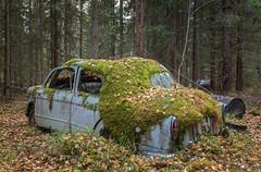 überleben (mariburg) Tags: rotten marode forgotten ruin decay desolate derelict cars rustycars auto canoneos6d sigma35mm14dghsmart